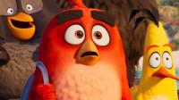 又一个动画IP终结!《愤怒的小鸟2》全球票房口碑双扑街!恐再无续集!