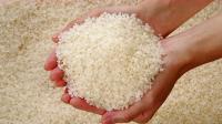 辨别大米是否打蜡,教你三个窍门,轻松就能分辨打蜡大米,真实用