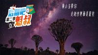 《后期吧魁叔》第二季 - 纳米比亚01 黄小主带你探寻世界最美星空!