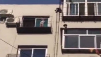 这妈心真大!3岁幼童站8楼窗外玩半小时  亲妈在家硬是没发现