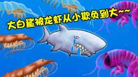 美味汪洋:变异鲨鱼被小龙虾一家从小欺负到大,最后终于报仇了!