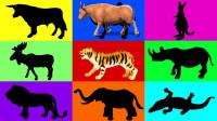 亲子早教动画认识老虎牛动物学颜色