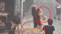 上海一男子遛狗不栓绳致人被咬伤 抱走又放下再次纵狗咬人