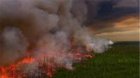 当亚马逊雨林着火,大火持续16天,对自然的危害有多大!