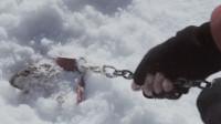 8条狗被科学家锁在南极,6个月后回去,拉开铁链看到了惊奇的一幕