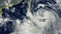 """台风""""白鹿""""登陆台湾 台湾多地迎狂风大雨 海边掀起数米巨浪"""