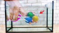 在水中剪破水宝宝压力球,会是一种怎样的感觉?画面强迫症最爱