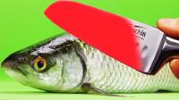 老外作死系列:用1000度菜刀切开一条鱼,3秒后意外发生了!