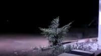 灵异事件:超自然的鬼魂目击事件,监控拍下令人毛骨悚然的一幕