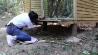 看看美女汉子如何维修心爱的丛林小木屋!