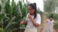 農村姑姑來侄兒家,侄媳婦玉米棒和豆角摘一兜子,連閨女也來幫忙