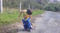 流浪狗狗咬着小男孩的裤腿不放,男孩都快被它吓哭了