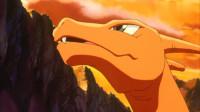 神奇宝贝:喷火龙在电视上看到小智,露出了担忧的表情