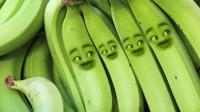 爆笑改编歌曲香蕉版《世界第一等》香蕉的表情太逗了!