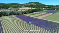 薰衣草收割大型农场