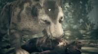 幽灵《先祖:人类奥德赛》03翻车啦~被吃掉啦 嘤嘤嘤