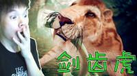 【XY小源】先祖  人类奥德赛 #3 吼吼 到处都是剑齿虎