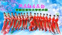 茅箭区老年大学艺术团《桃花红杏花白》视频制作:映山红叶
