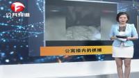 亳州:网逃犯藏身公寓楼, 民警出击迅速抓获