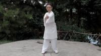 张光萍教学视频-太极拳八法五步 第八课 肘