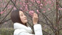一首翻唱歌曲好听极了《 我的楼兰 》血脉相连  2019网络最火的MV