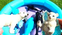 海洋动物玩具找伙伴来游泳