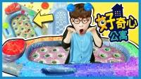 凯文的好奇心公寓之DIY海洋宝宝水精灵沙发 | 凯利和玩具朋友们