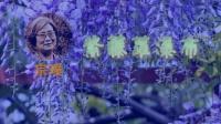 104紫藤萝瀑布-宗璞