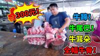 广西农村小伙,300块钱买了,9000块钱老牛的全幅骨头,超值!