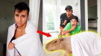 双胞胎二哥走进浴室,结果走出一只巨型动物,大哥:他变身了!