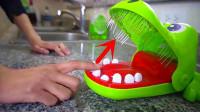 将咬手鳄鱼牙齿换成钉子,玩起来会多过瘾?网友:看到结果放心了