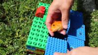 """老外脑洞大开,用乐高玩具制作""""捕鱼神器"""",能捕到多少条小鱼?"""