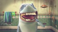 原来鲨鱼会刷牙是这样的,过程超搞笑,牙刷也很硬核