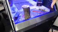 国外小哥玩推币机,将近一米的硬币塔瞬间倒塌,老板心都要碎了