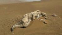 罗布泊发现几百具干尸,专家鉴定完有惊人发现,山海经记录是真的