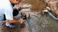 农园趣事:拦河网绝对是大杀器,这样一铺结局肯定精彩!