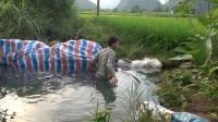 小莫用截流方法灌溉农田,下游水干后水沟里有大鱼出现,太意外了