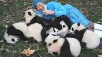 熊猫妈妈不放开幼崽,饲养员只用一碗牛奶,这难道就是忘崽牛奶
