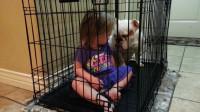 12.婴儿和狗比特犬一起变得友好★婴儿和狗视频