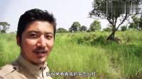 冒险雷探长:在尼泊尔丛林住七星级宾馆,这体验终身难忘!