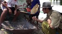冒险雷探长:来到了食人族现代村落,1元钱跟当地的小孩买到4条烤鱼,还附送烤香蕉