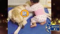 家庭幽默录像:对于宝宝来说,狗狗都是最珍贵的朋友,盘点狗狗与宝宝的暖心瞬间