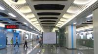 [2019.9]深圳地铁2号线 蛇口港-赤湾 运行与报站&换乘5号线过程