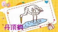 丹顶鹤简笔画教程,画丹顶鹤简笔画第2种画法,积木时光简笔画