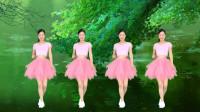 广场舞《灰姑娘DJ版》简单32步动感劲爆热身操!