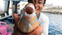 阿锋钓到长相奇特的大鱼,起名龅牙妹,地球哥却直呼好吃又很贵