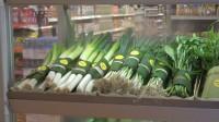 树叶成新包装袋 ?中国拒绝洋垃圾后,竟打起了植物的主意?