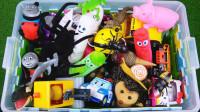 超精彩!原来动物和变形警车珀利在现实中原型大揭秘!汪汪队儿童玩具故事