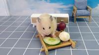 主人给仓鼠准备水果营养餐,小仓鼠只吃爱吃的,不爱吃的瞧都不瞧