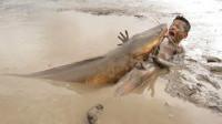 男孩在泥巴里抓鱼,一只巨无霸突然冒了出来,结果会怎么样?
